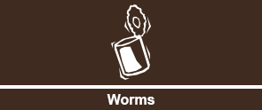 Can of Worms Graphic - Fishing Bait